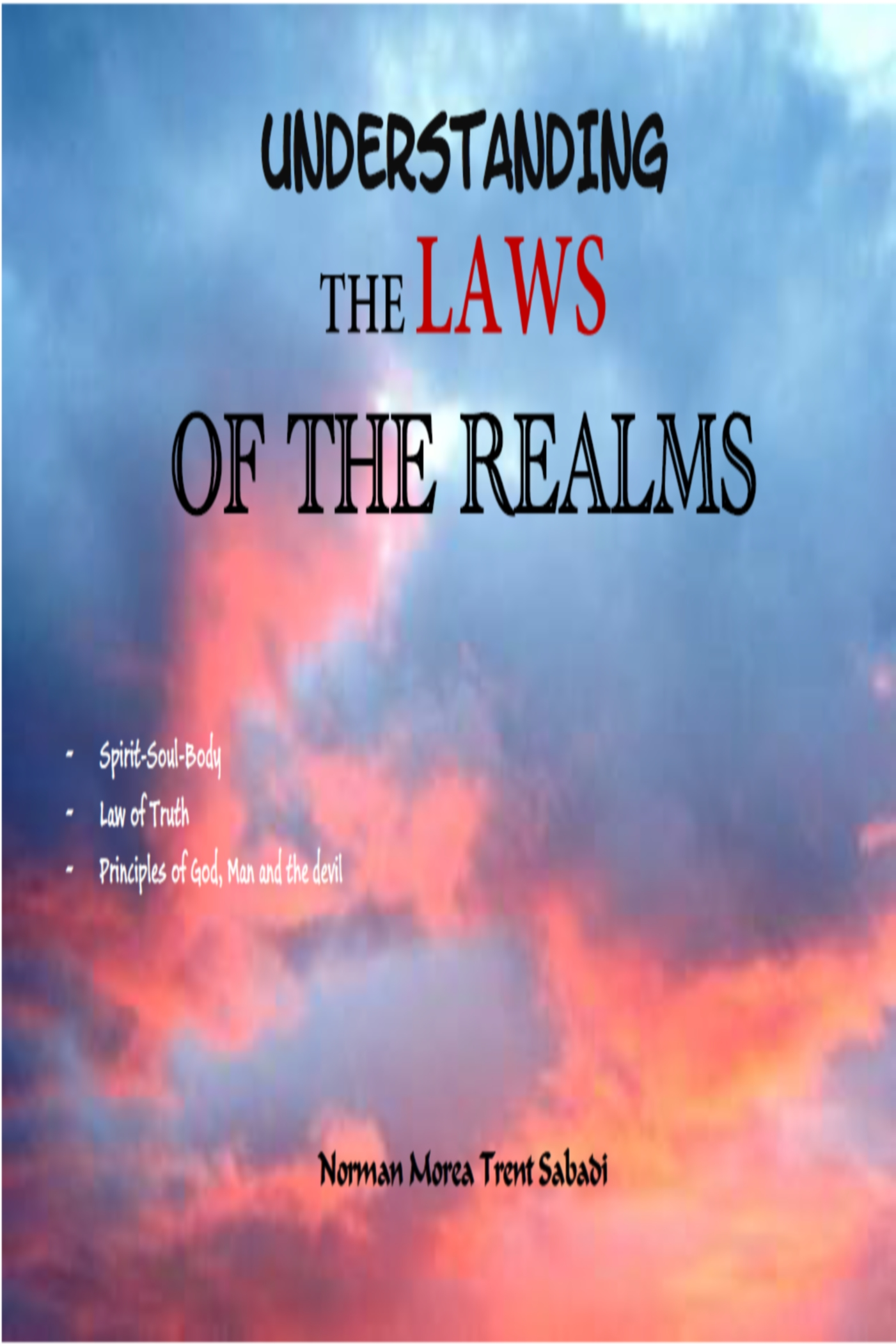 Cover image for Understanding The Laws Of The Realms